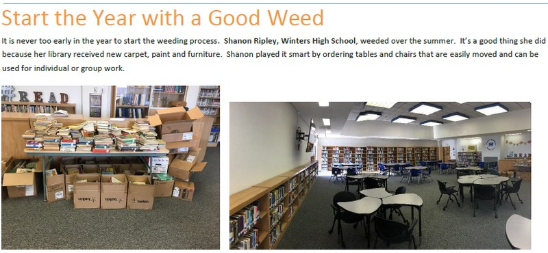 CONGRATULATIONS to Shanon Ripley for making the Region 15 Library News! Featured Photo