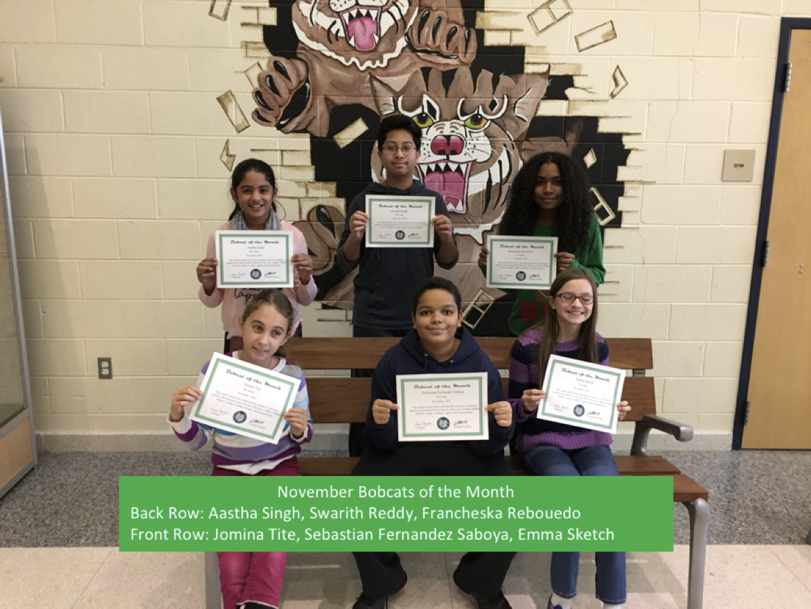 Bobcats of the Month