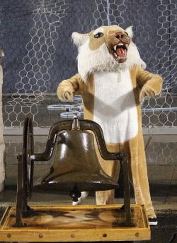 CATS protect the BELL.JPG