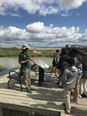 students look at the salt marsh, image 2