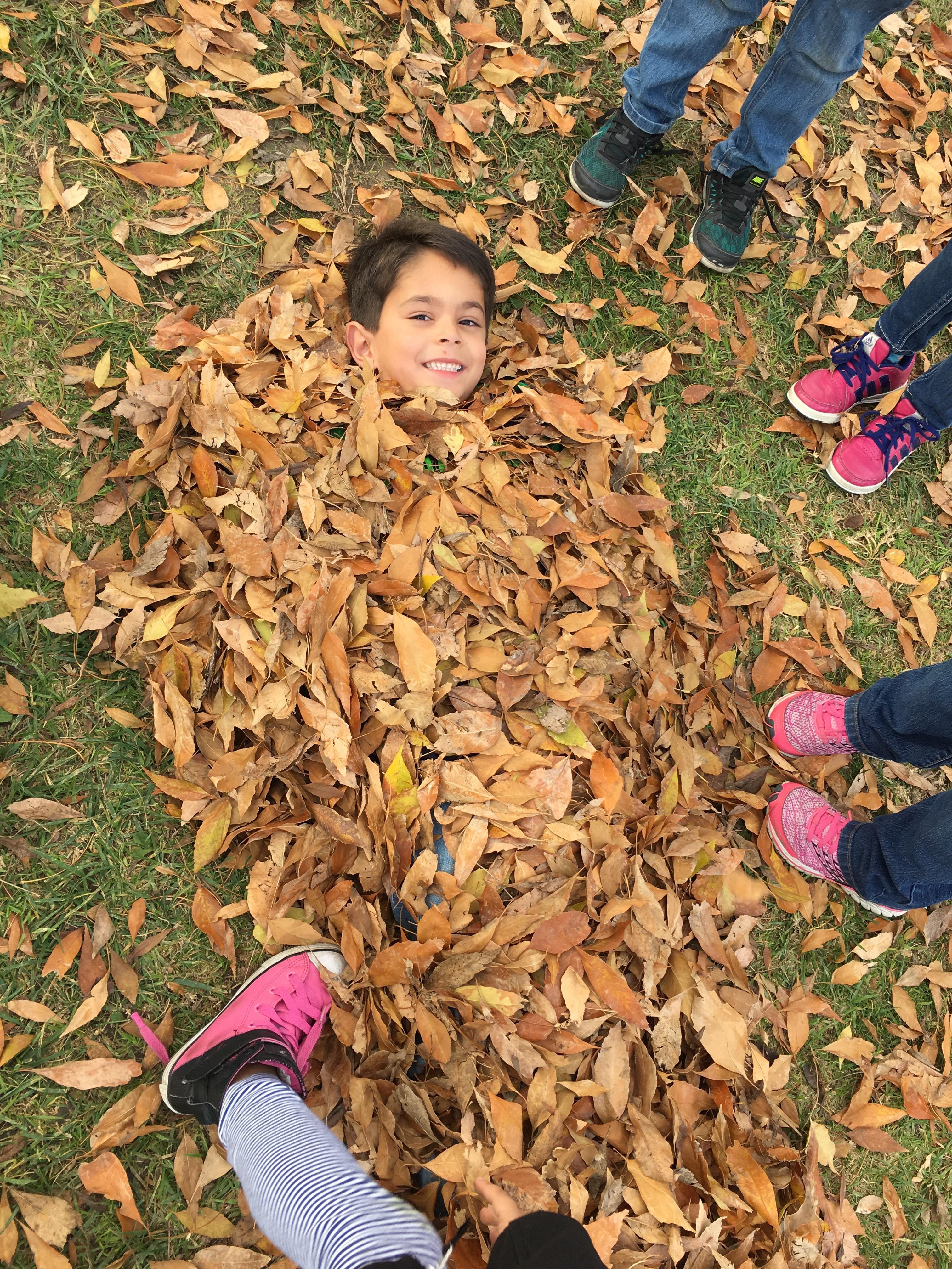 Kindergarten Fun in the Leaves