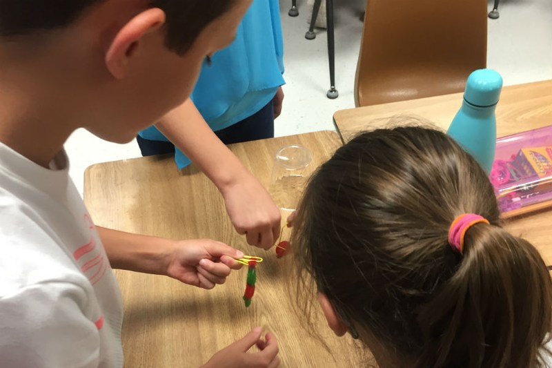 Problem Solving in Ms. Sarvis's Class on Day One