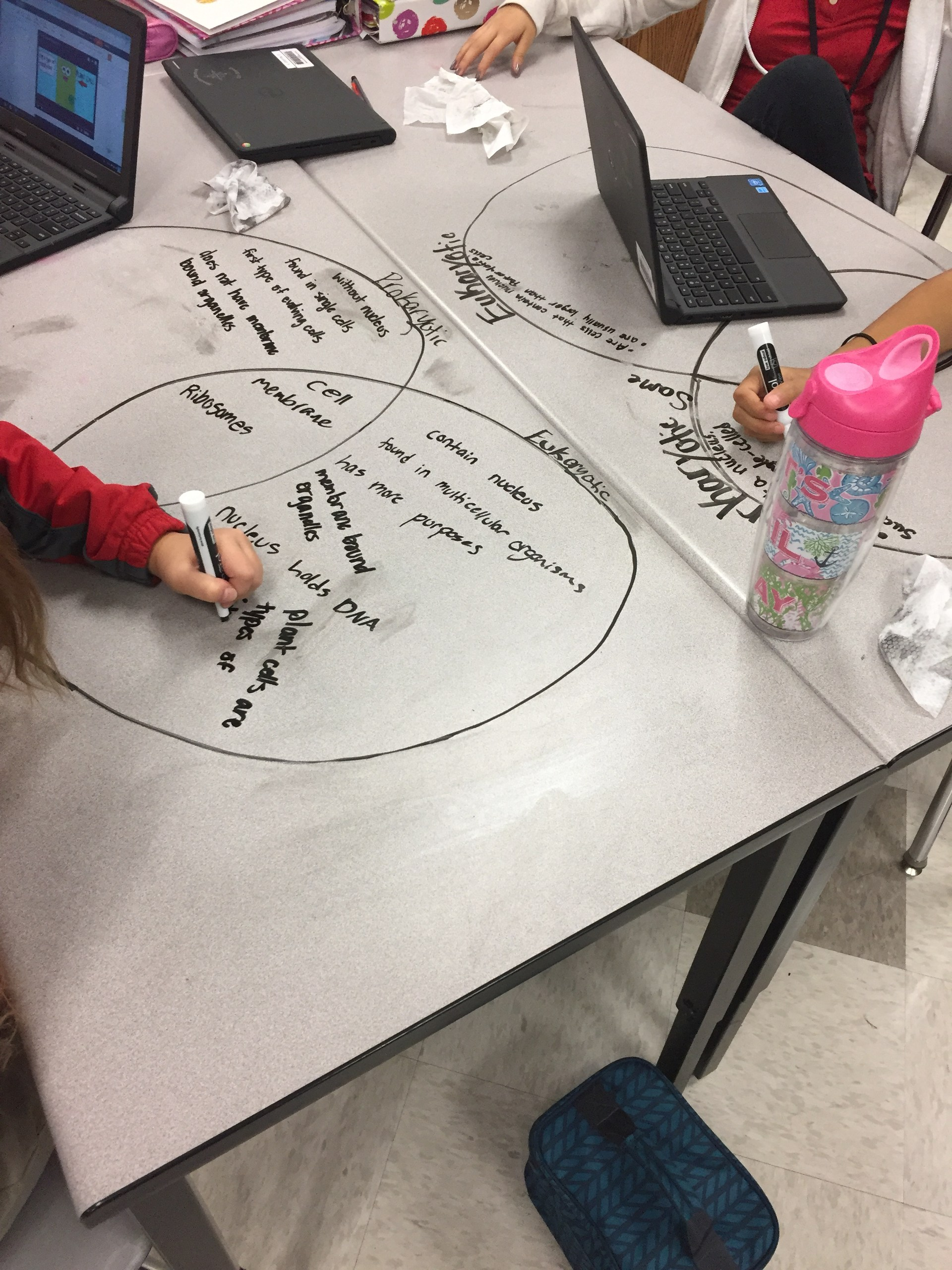 Comparing Prokaryotic and Eukaryotic Cells by drawing Venn diagrams on the lab tables