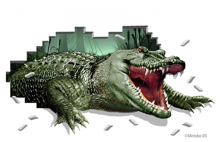 Gator Crash
