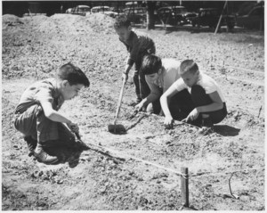 3 students working a garden