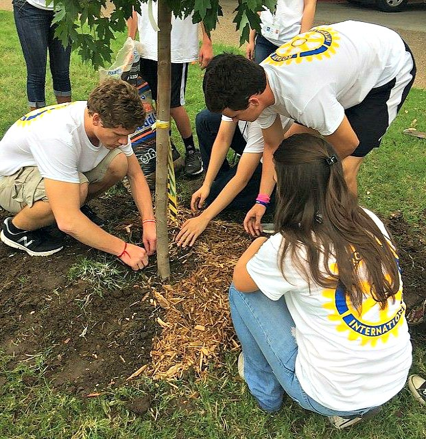 RYLA students planting trees in Denton Texas