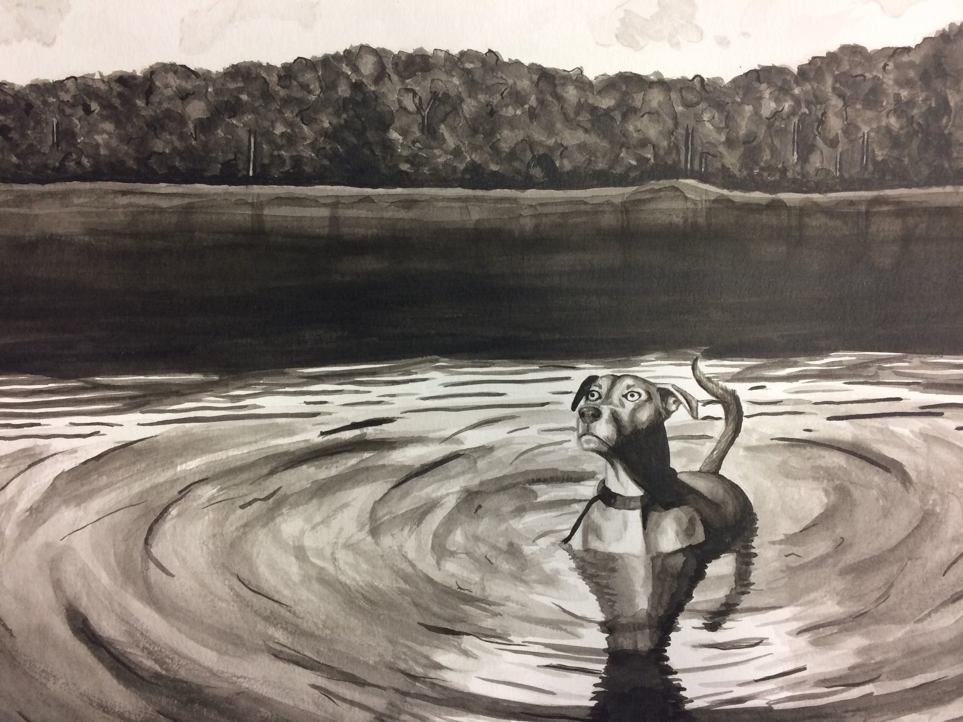 drawing of a dog in water