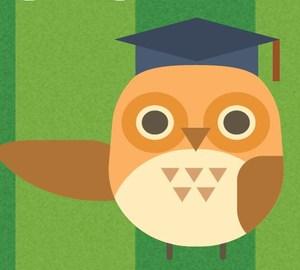 Dc Owl.JPG
