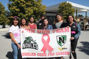 3-1-17 NHS Cancer Walk 002.JPG