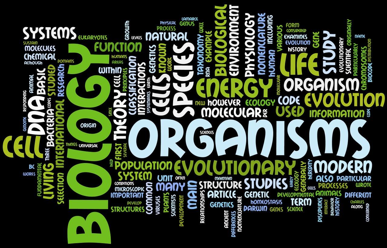 Biology a amiee megyei rancho del mar high school biology a malvernweather Choice Image