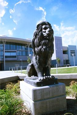 Image of EHS Lion