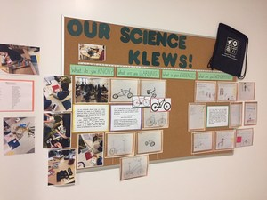 Stem and the clue process