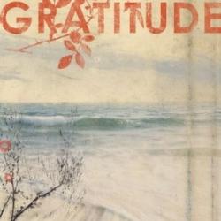 Gratitude-2-300x300.jpg