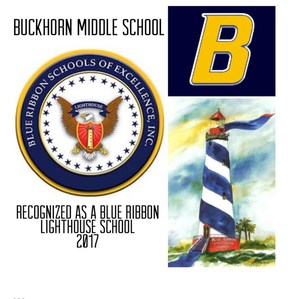 Buckhorn Middle Named Blue Ribbon Lighthouse School