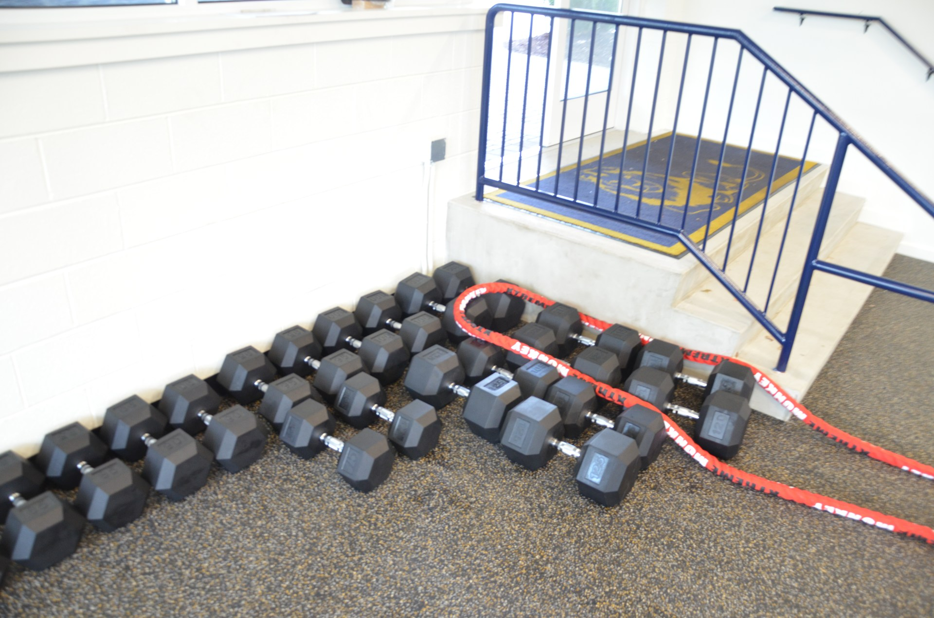 Dumbbells in Coach Paternostro Training Center