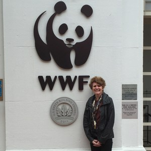 Peggy Rohan's Profile Photo