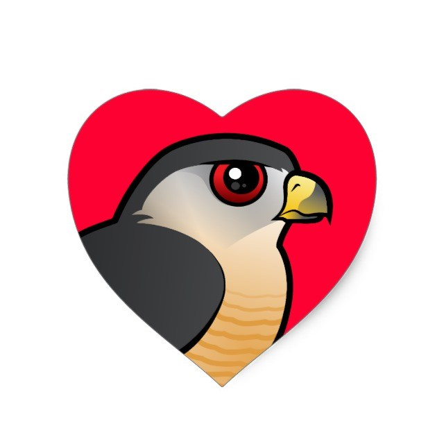 Hawk in Heart