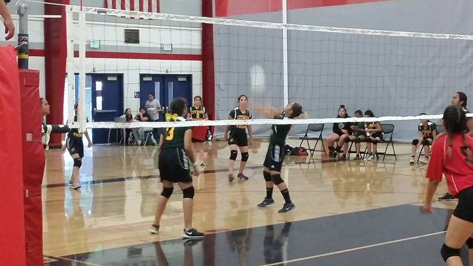 Citrus Volleyball in action