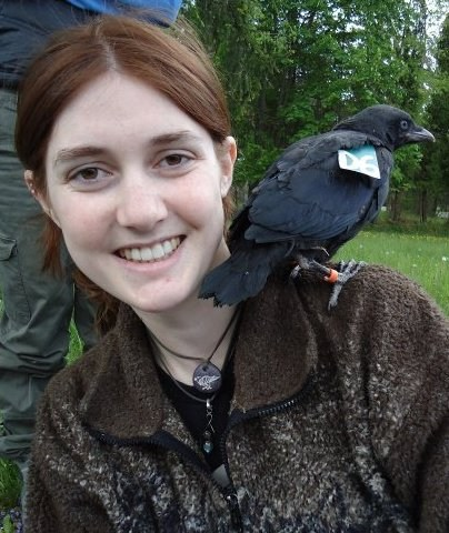 Me and one of my study crows.