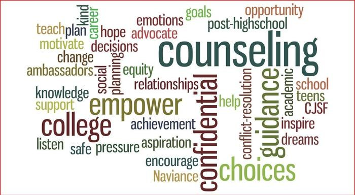 school counselor weaknesses