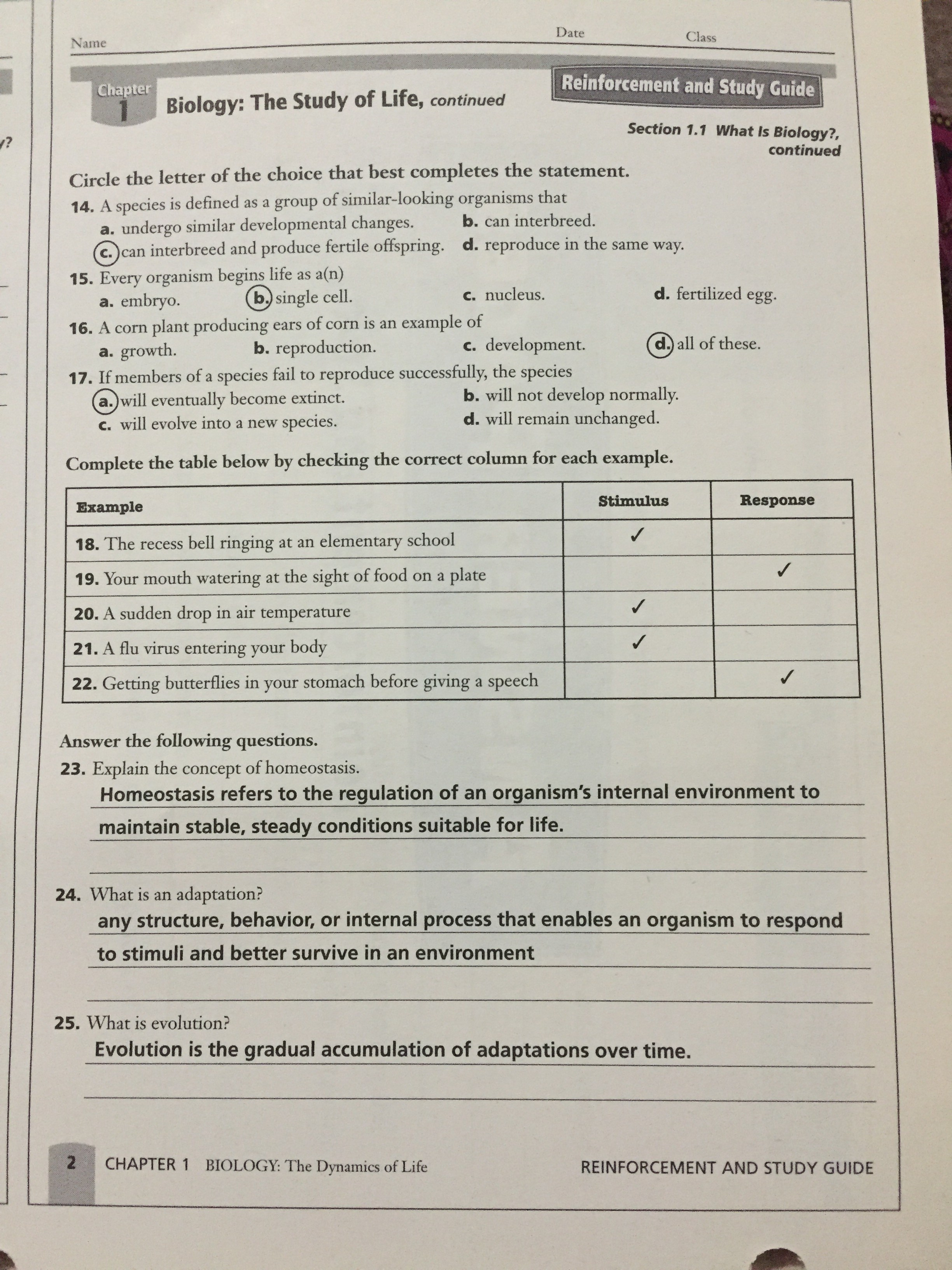 worksheet Chapter 12 Patterns Of Heredity And Human Genetics Worksheet Answers al madinah school hw4 answers