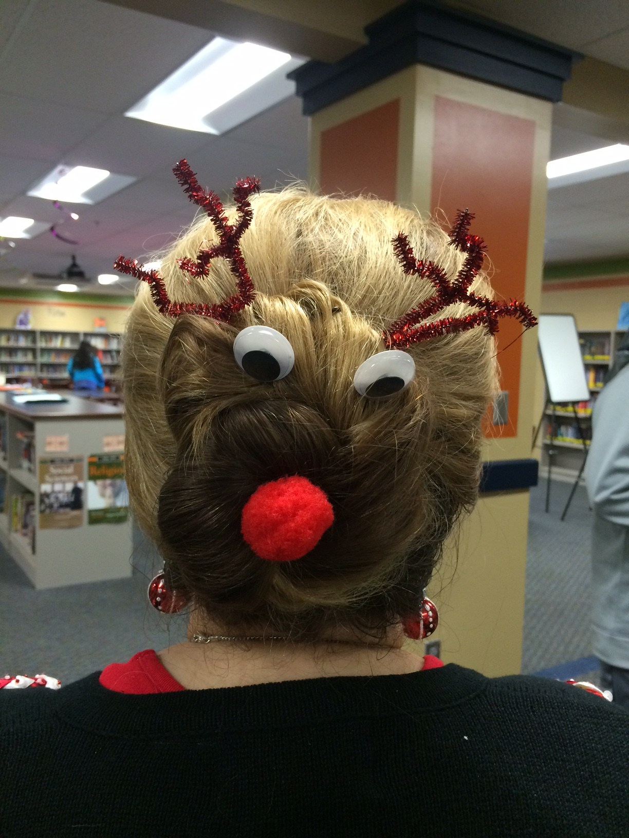 Reindeer Hair in the Library