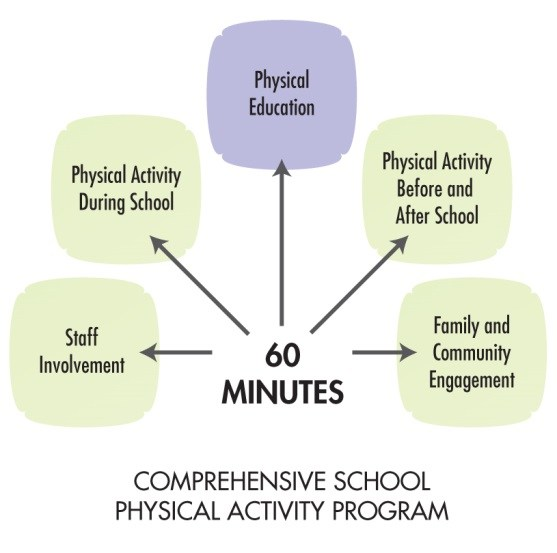 importance of physical activity in schools education essay Educators need to emphasize the importance of a strong program for physical education and place a priority on the role that schools play is critical in increasing physical activities by offering daily physical education of these alarming trends can be reversed by physical education in schools.