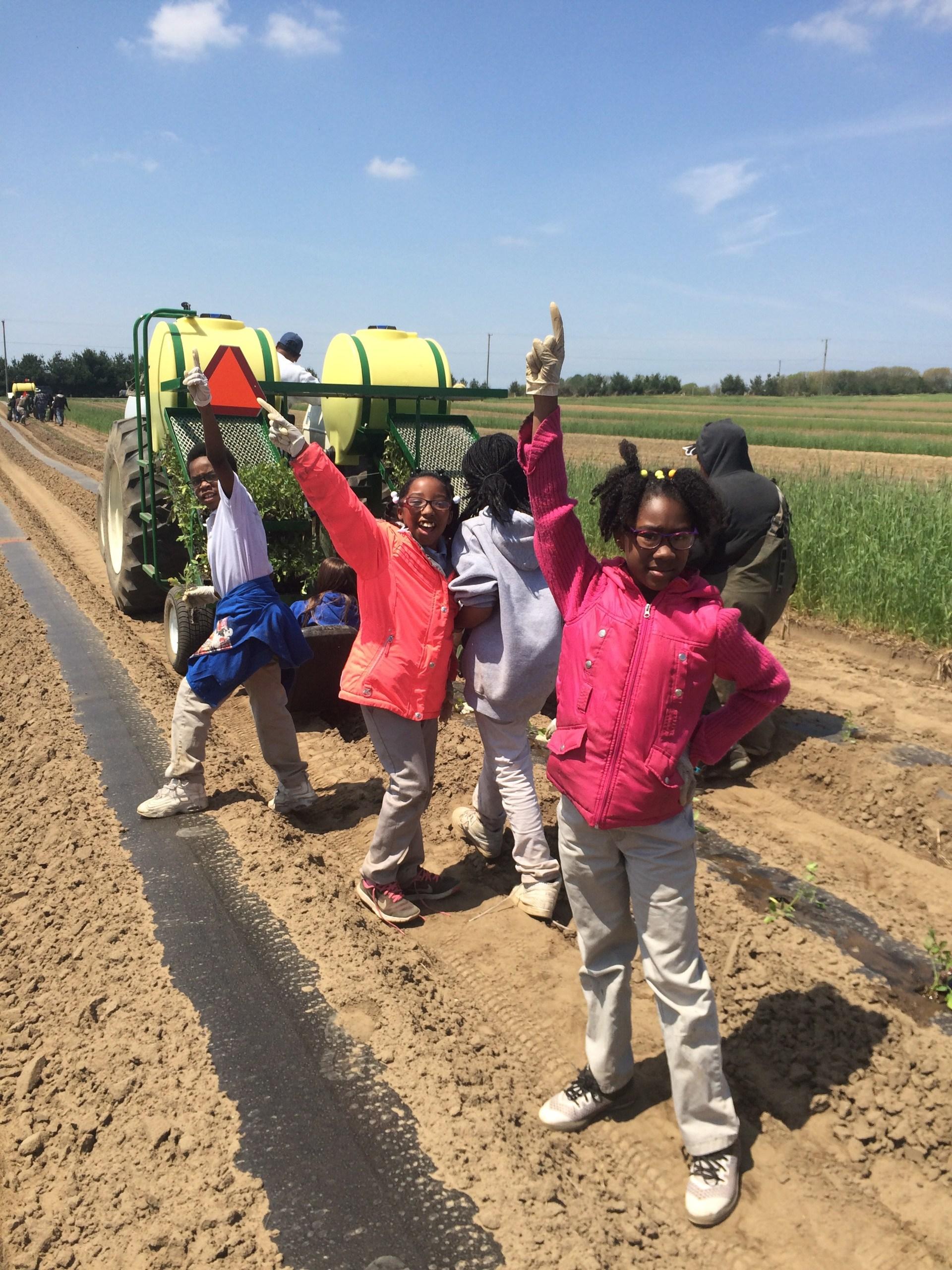 Students on the farm