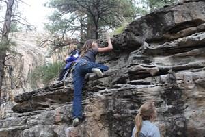 Students climbing at Sailing Hawks.