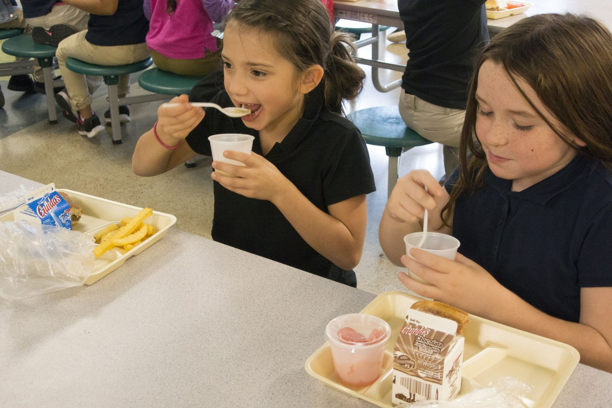 the national school lunch program Before you apply is your school interested in participating in the national school lunch program here is a list of things to consider before applying [1784 kb ] how to apply to apply for the national school lunch program (nslp) and school breakfast program.