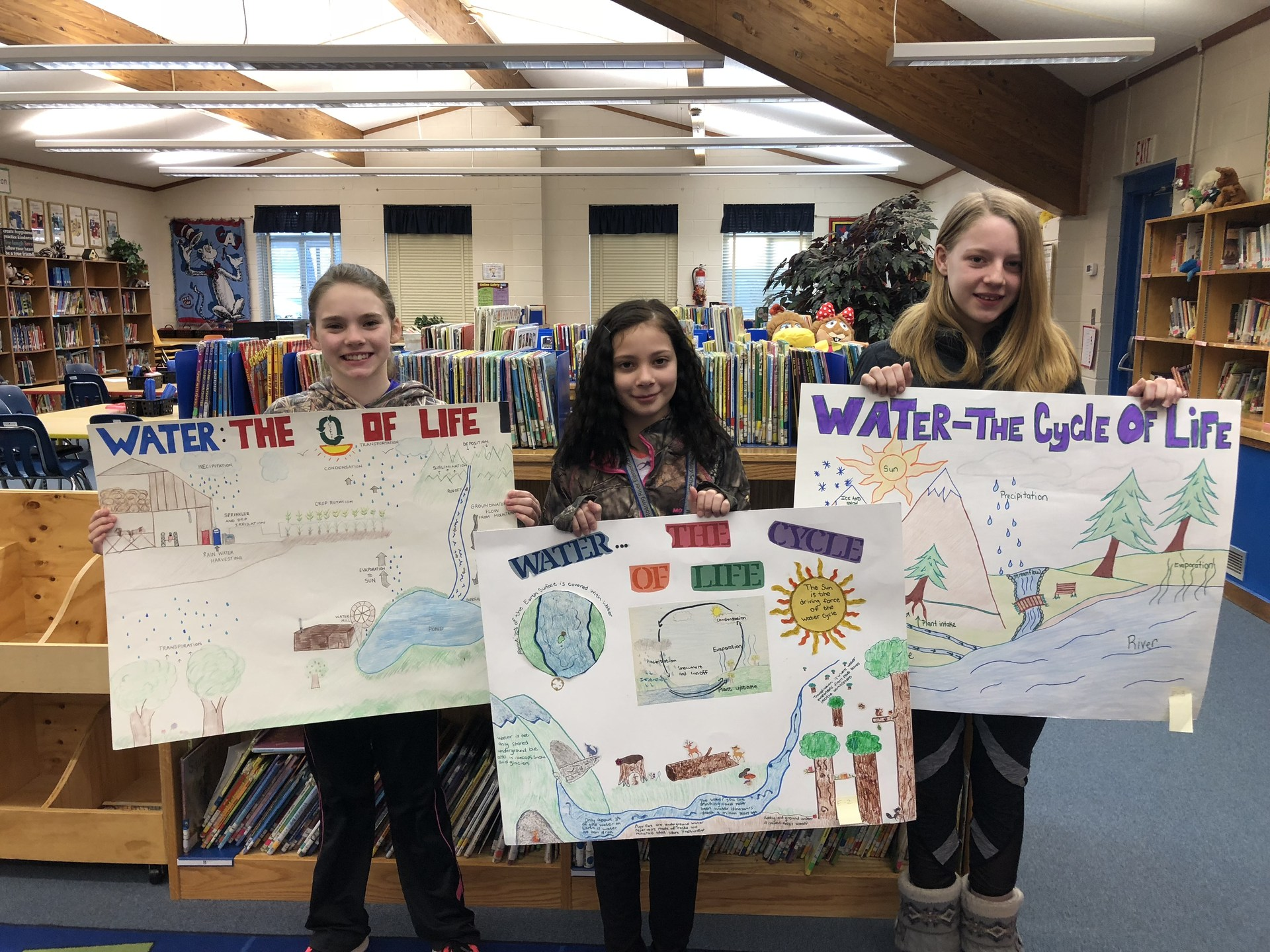 Soil and Water Poster Winners
