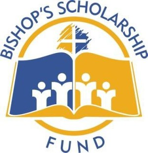 BSF logo .jpg