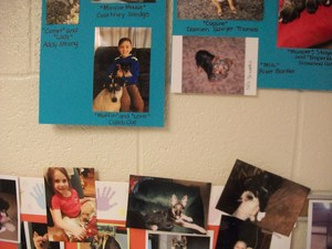 Pictures of Pilot students' and staff members' pets.