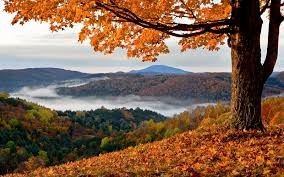 Mountains in the fall.