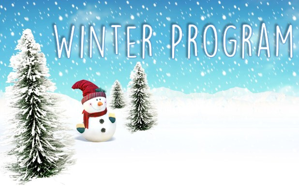 Image result for winter program