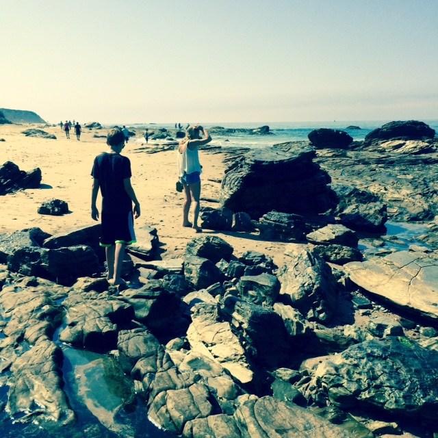 California Beachcombing