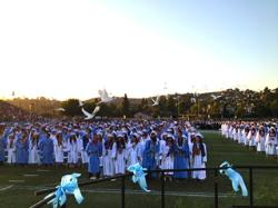 WHS doves photo.jpg