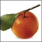 HOTM-mandarin.jpg