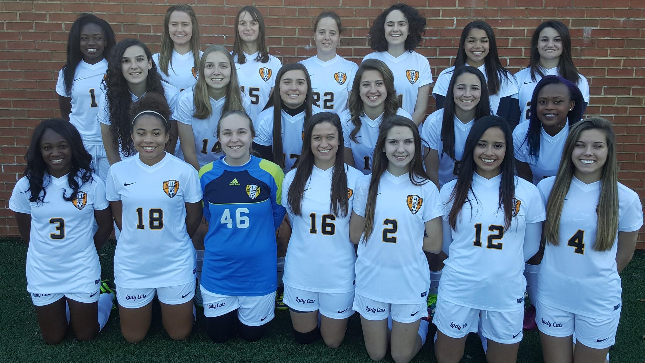VHS Soccer Team