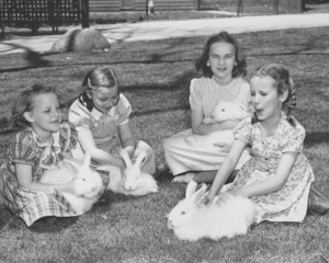 Four girls  sitting on the grass while holding or stroking white rabbits.
