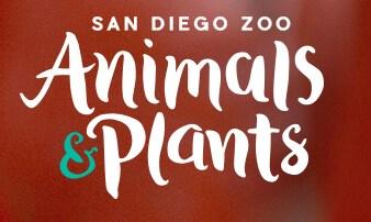 San Diego Zoo/Animals