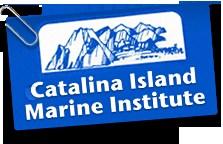catalina-img.png