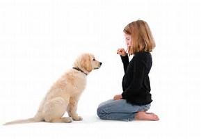 GIRL GIVING DOG A TREAT
