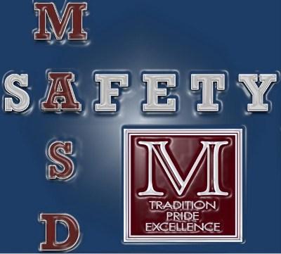 Safety Logo - Metallic