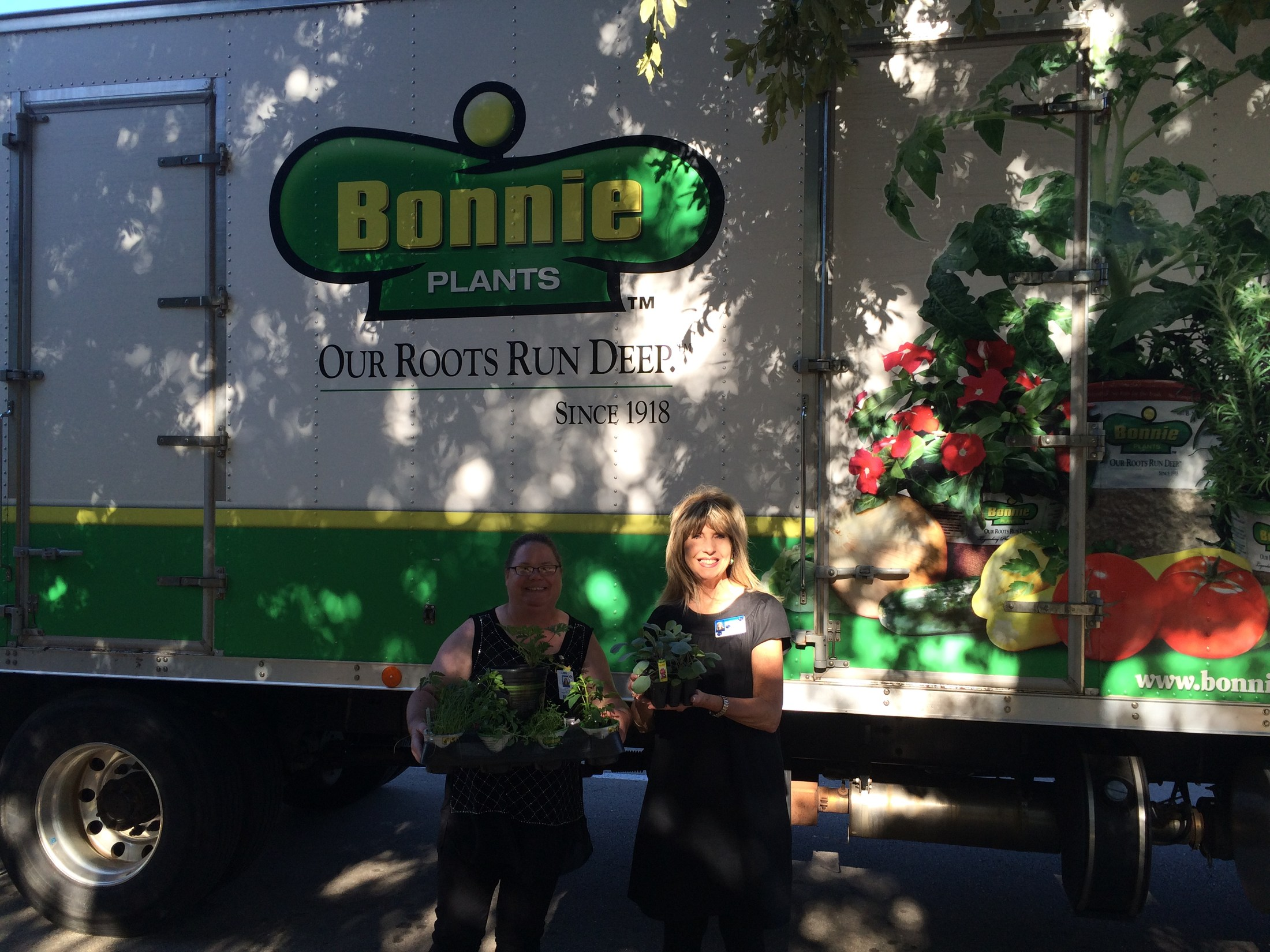 Bonnie Plants donates cabbages