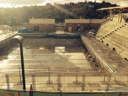 pool-gold.JPG