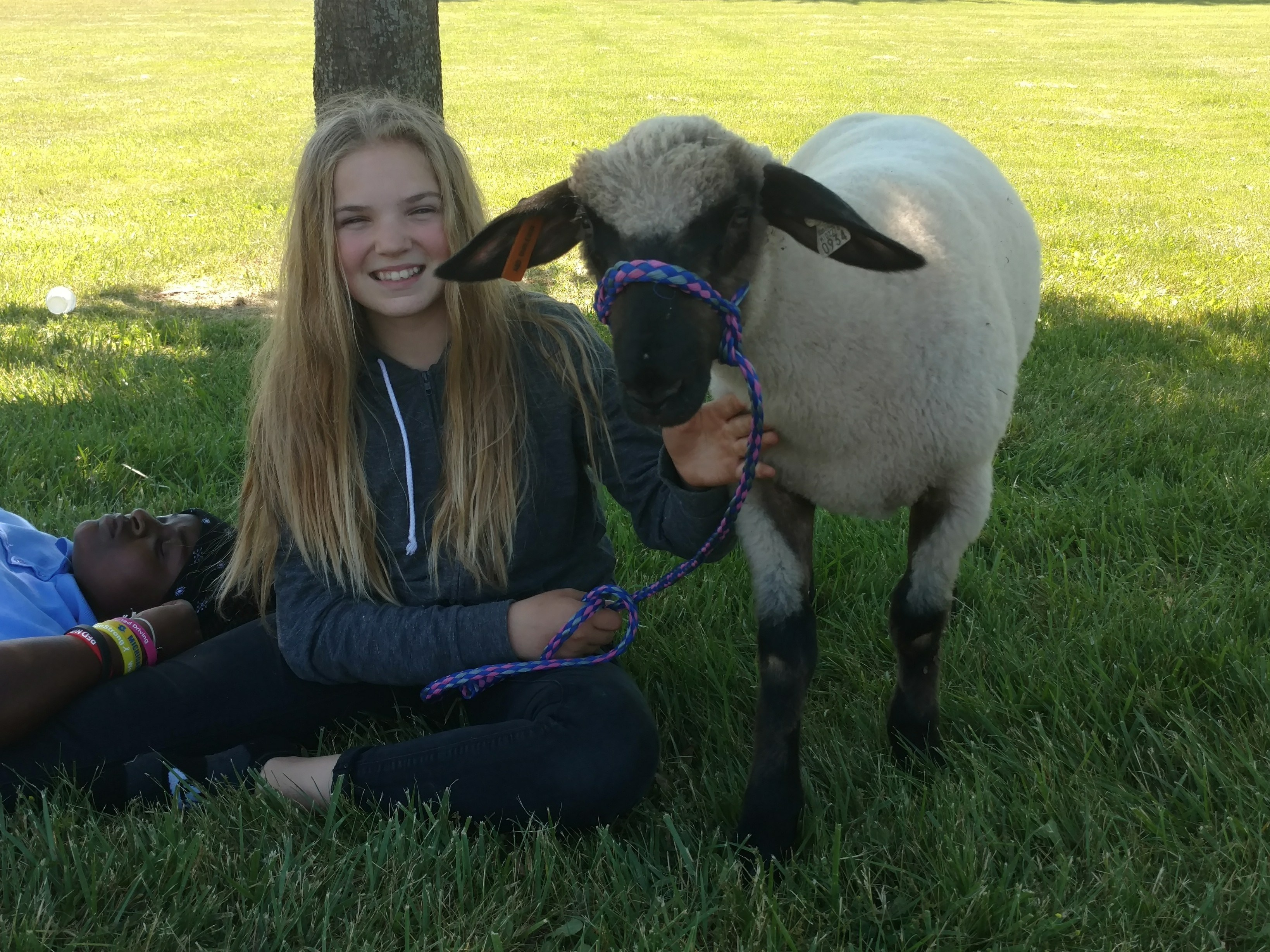 Student with Sheep