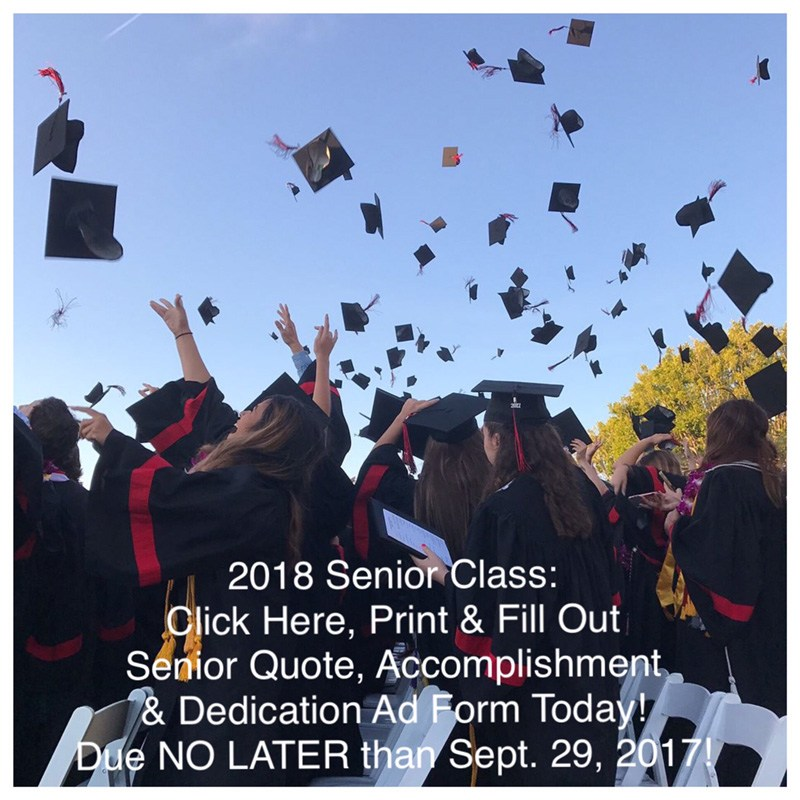Triton Yearbook: Senior Quote, Accomplishment & Dedication Ad Form Thumbnail Image