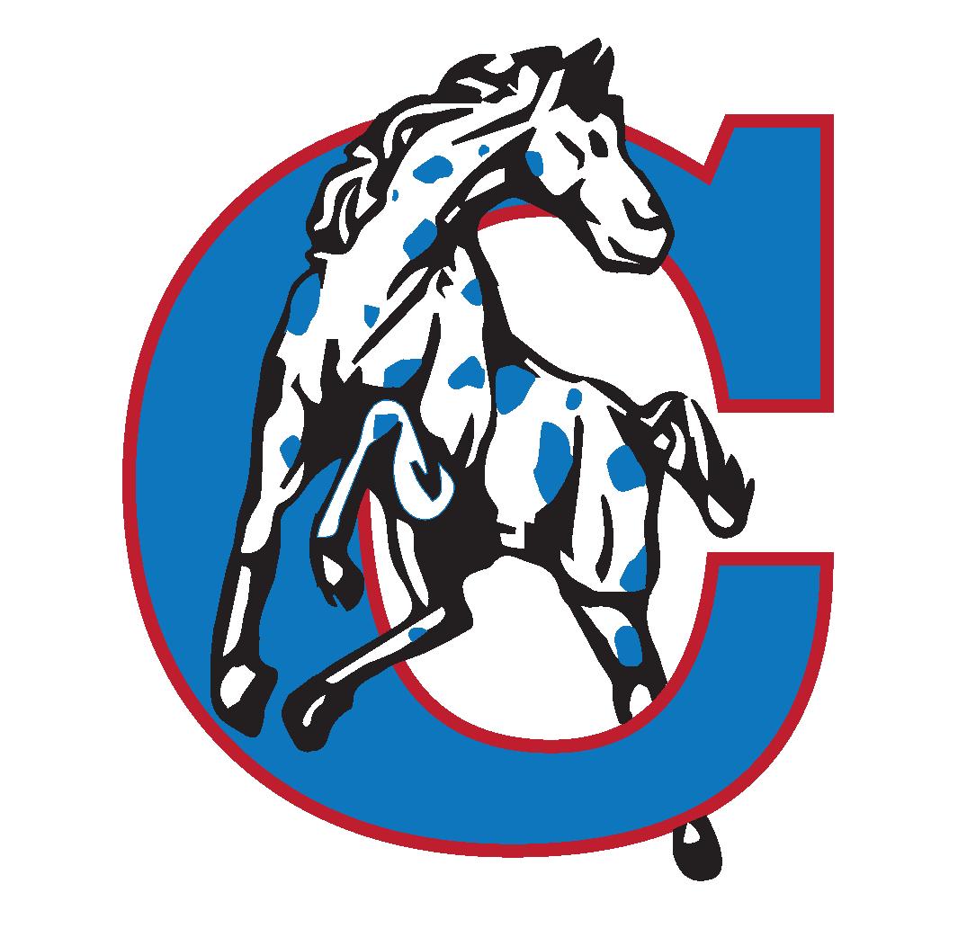 California R-1 Sports Logo