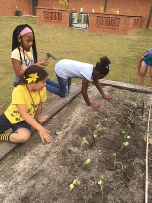 S.L. Mason 5th graders in the garden.